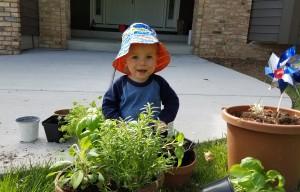 Alexander helping me plant herbs